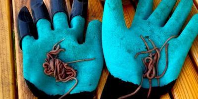 Тестирование перчаток Garden Genie Gloves. Тест 3: копаем червей к рыбалке