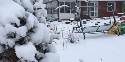 Мой сказочный зимний сад