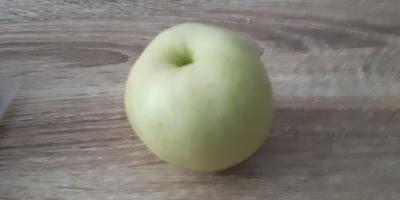 Это яблоки Белый налив или нет?