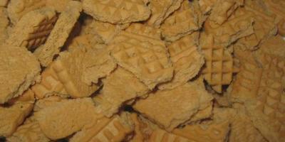 Шоколадный фадж с орехами
