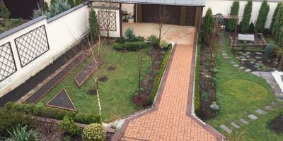 Как изменился мой сад