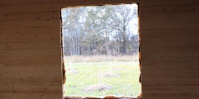 Из окна...