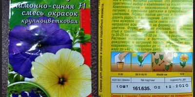 Комплиментуния лимонно-синяя F1. Итоги тестирования