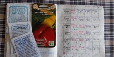 О качестве семян: статистика нового посева