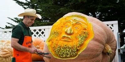 Фермер Майк и его тыквенные монстры