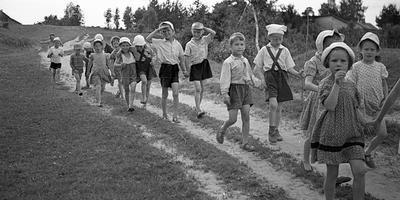 Советская дача: от чаепитий - к огородничеству