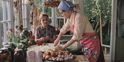 Советская дача:  быт и дачные проблемы