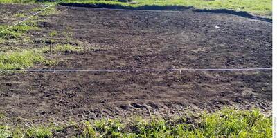 Домашнее задание №2: огород – это соревнование, кто первый...