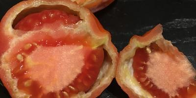 Подскажите, пожалуйста, что с томатами? Мякоть как деревянная, белые прожилки