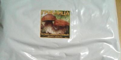 Радуга - к грибам! Маленькая радость больших надежд