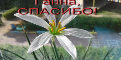 Тепло души с благодарностью принимают малыши. Спасибо, Ганна! Спасибо, seedspost.ru!