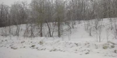 Зимние выходные!