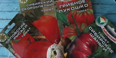 Хороший пример заразен, или Тестим томаты 3 фирм!