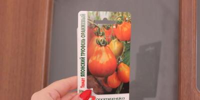 Хороший пример заразен, или Тестим томаты разных сортов и фирм. Томаты Биотехника