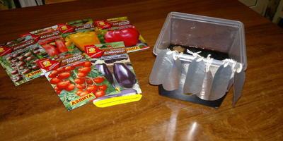 2 этап подготовки семян - традиционный