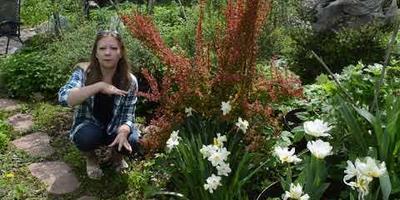 Работы в цветнике и огороде в мае