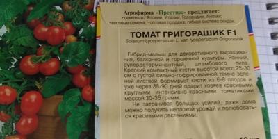 """""""Малыш"""" Григорашик и его друзья"""