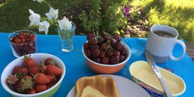 Воскресный завтрак дачника
