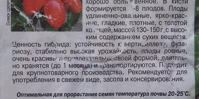 Чем больна рассада томатов?