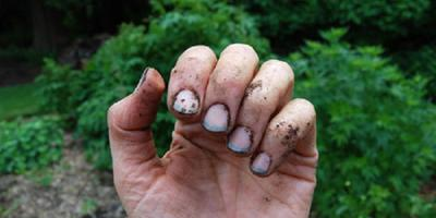 Как очистить руки после дачных работ?