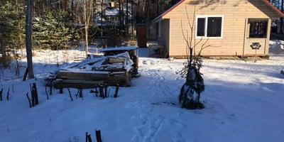 Как правильно разбить пейзажный садик на участке?