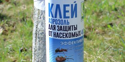 Клей аэрозоль для защиты от насекомых. Изготовление клеевых поясов