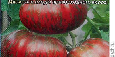 """Вспомнить вкус из детства - томат """"Амурский тигр"""""""