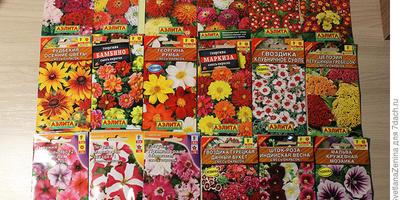 Что с чем можно компоновать из имеющегося набора цветов?