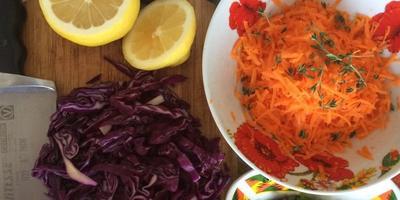 С едой на Ты, или Рецепты от Кости! Шаурма со сливами и салат из краснокочанной капусты и мяты