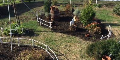Фруктовый сад и другие радости осени