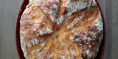 Рассвет, хлеб, цветы, посадка-пересадка и маринованные жареные перчики...