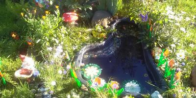 Пруд и сухой ручей для любимого внука