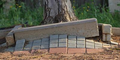 Весенние казусы с садовыми дорожками и как их избежать