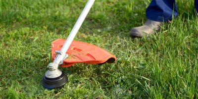11 советов тем, кто решил приобрести триммер для газона