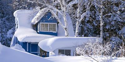 6 неожиданных способов применения утеплителя на даче