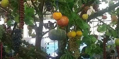 На Ташкентской  сельхозяственной выставке