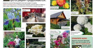 """Фотографии в журнале """"Дом в саду"""" №7 2018"""