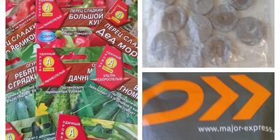 """Отчет о получении семян от ООО """"Агрофирма АЭЛИТА """""""
