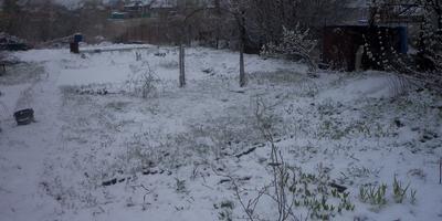 Весна по-сибирски!!! Снеговик и газон! Это по-нашему!!!