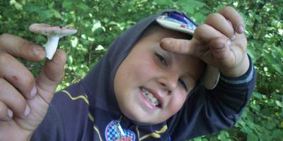 Как заманить своего ребёнка в лес за грибами!