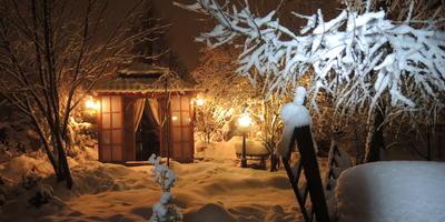 Возвращение в зимнюю сказку