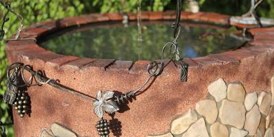 Декоративный колодец-пруд из бетонного кольца. Как создать такую красоту у себя на участке