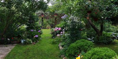 Приглашение в сад