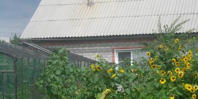 Домашнее задание №2: двадцать лет работы на огороде