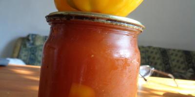 Перец Калифорнийское чудо оранжевое. Итоговый отчет