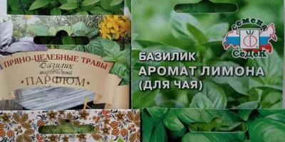 """Послевкусие от конкурса """"Клумба мечты с Seedspost.ru"""""""