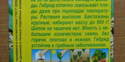 Баклажан Чёрный русский F1. I этап. Посев