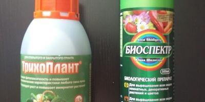 """Получена посылка от НПО """"Биотехсоюз"""""""