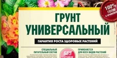 Петуния Ольга F1. I этап. Посев
