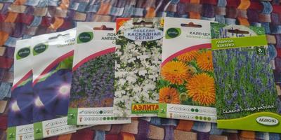 Мои сегодняшние приобретения - семена =)